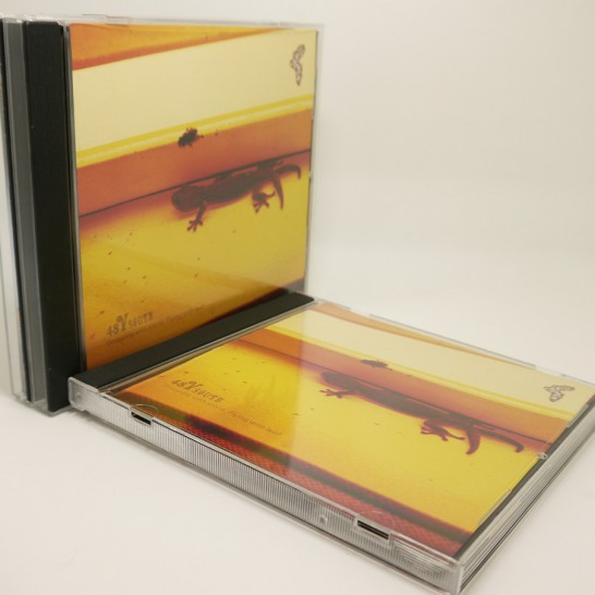 physical version of South