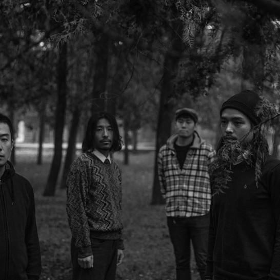 琥珀乐队 2018