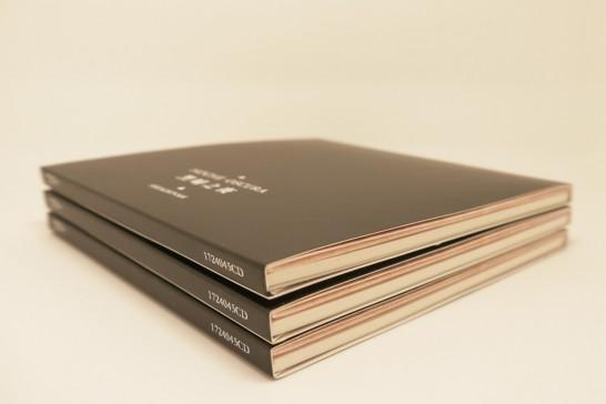 安娜与陈飙(shekhinah)唱片《黑暗之夜》实物照片